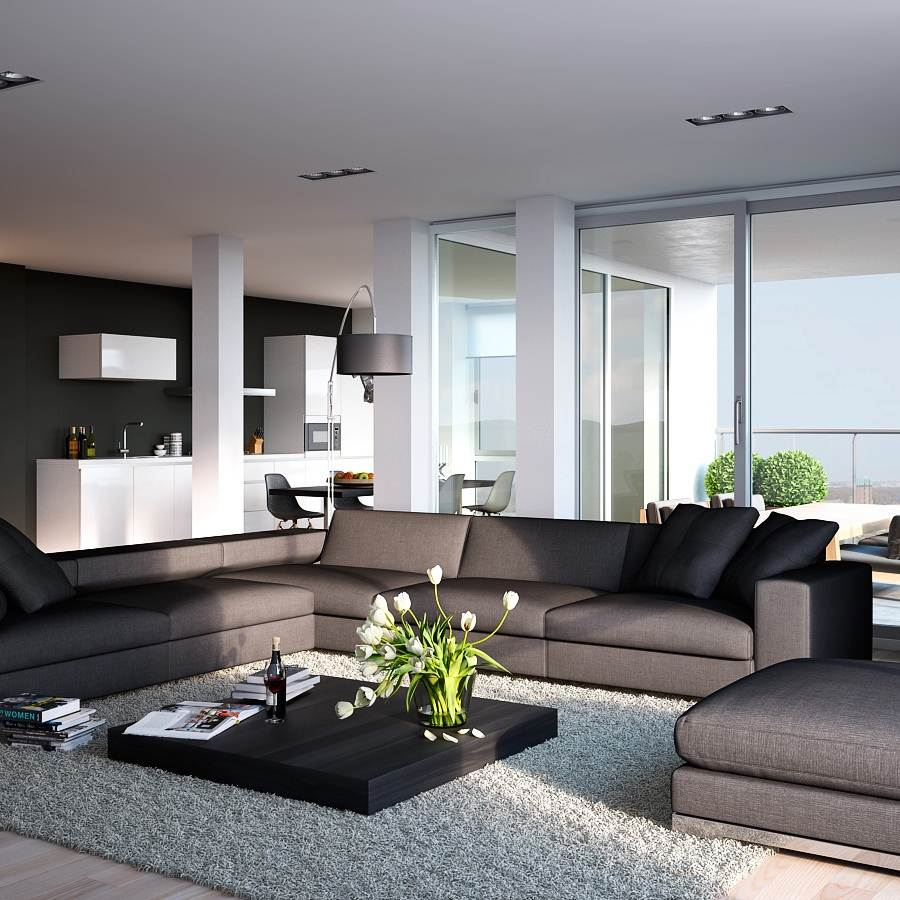 Contemporary Living Room Ideas Apartment contemporary living room ideas apartment