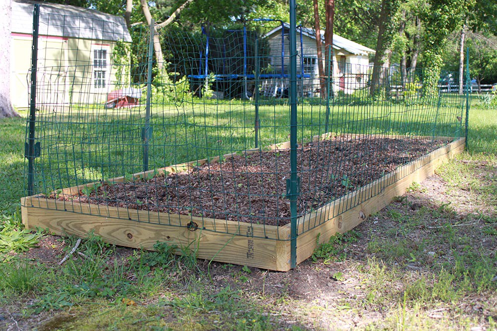 Building A Vegetable Garden Fence Hawk Haven