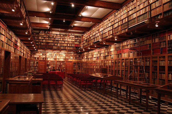 Beautiful Private Libraries photo - 10