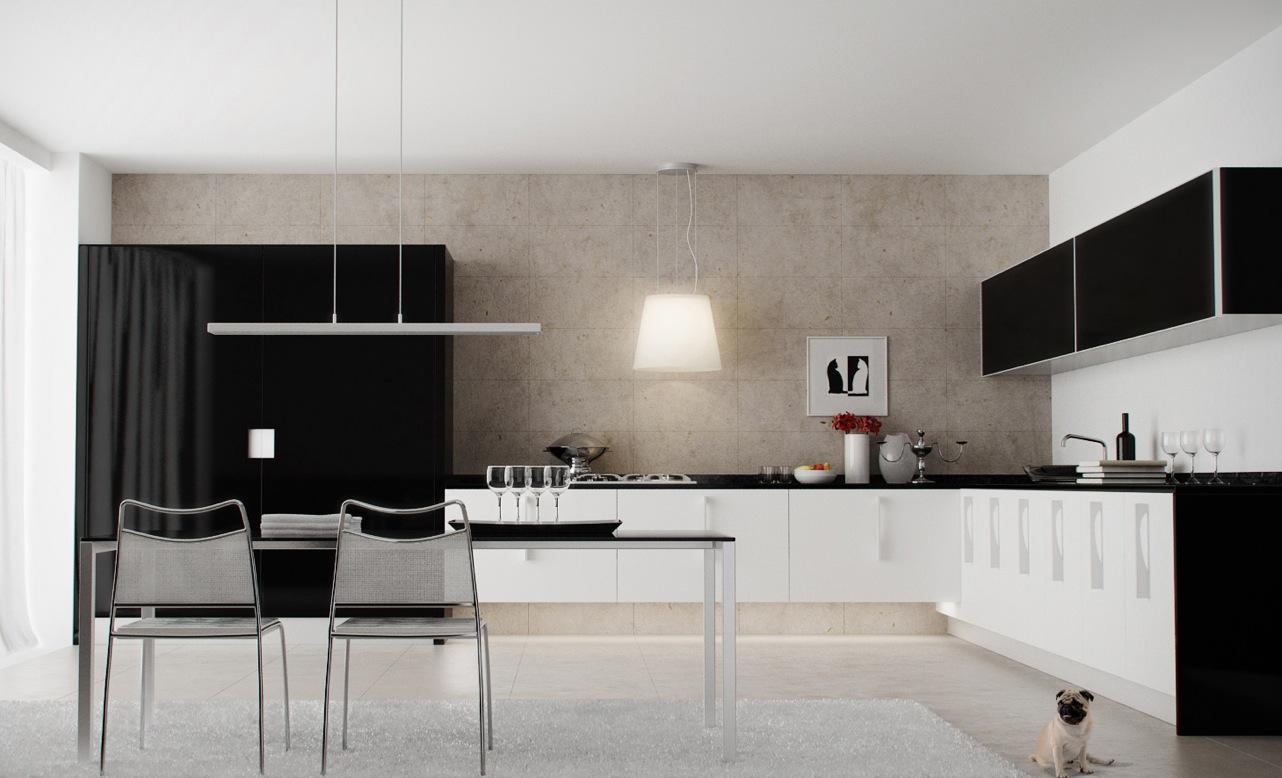 Black and White Kitchen Interior photo - 2