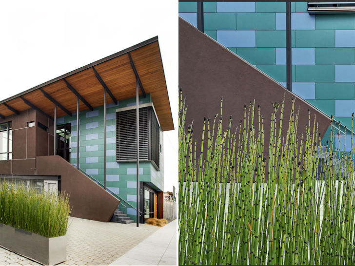 Eco House Berkeley photo - 10