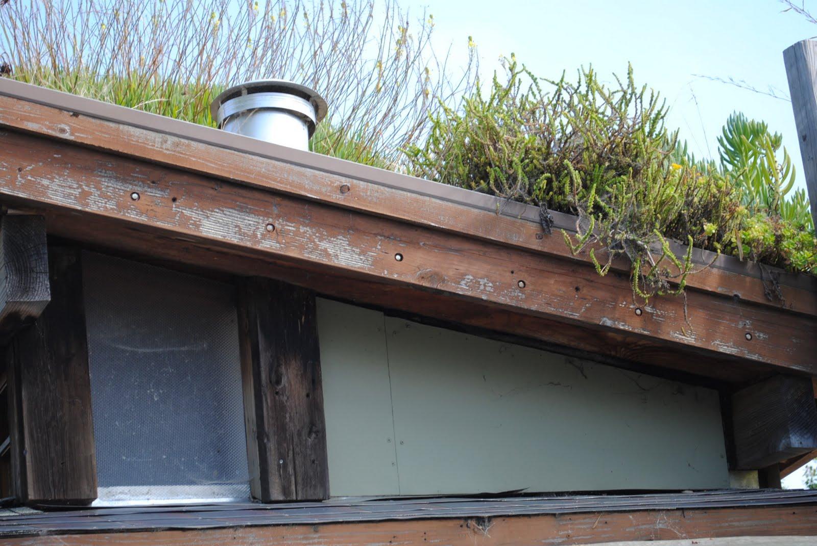 Eco House Berkeley photo - 2