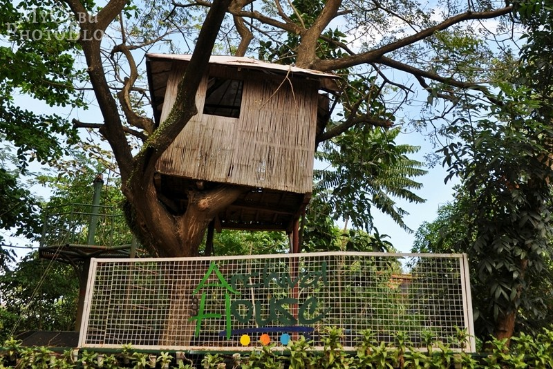 Eco House Cebu photo - 8