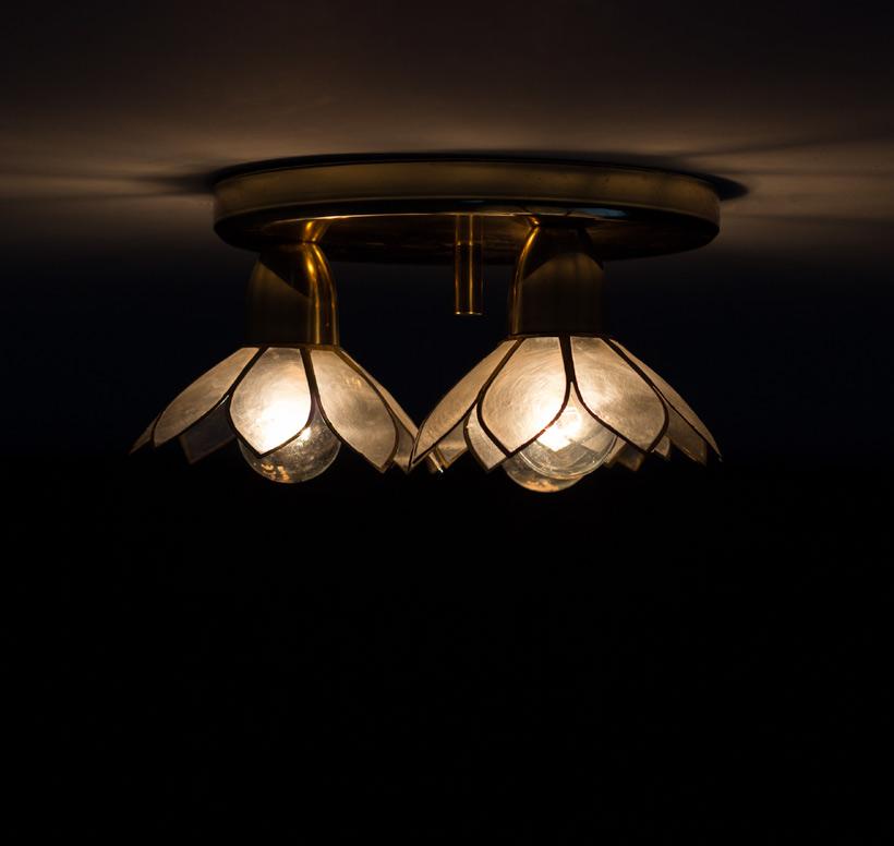 Lotus Ceiling Lamps photo - 4