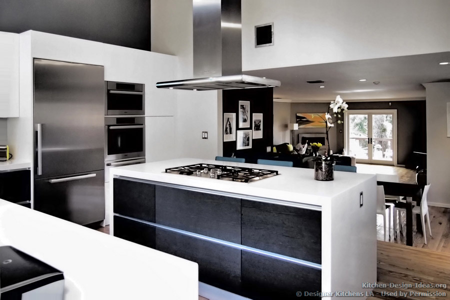 Modern Black And White Kitchen Hawk Haven