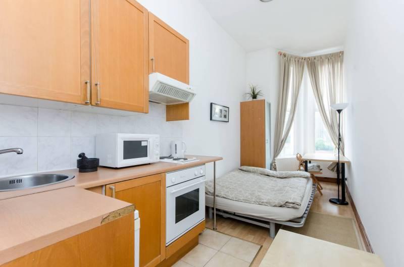 Open-plan kitchen in studio flat photo - 10