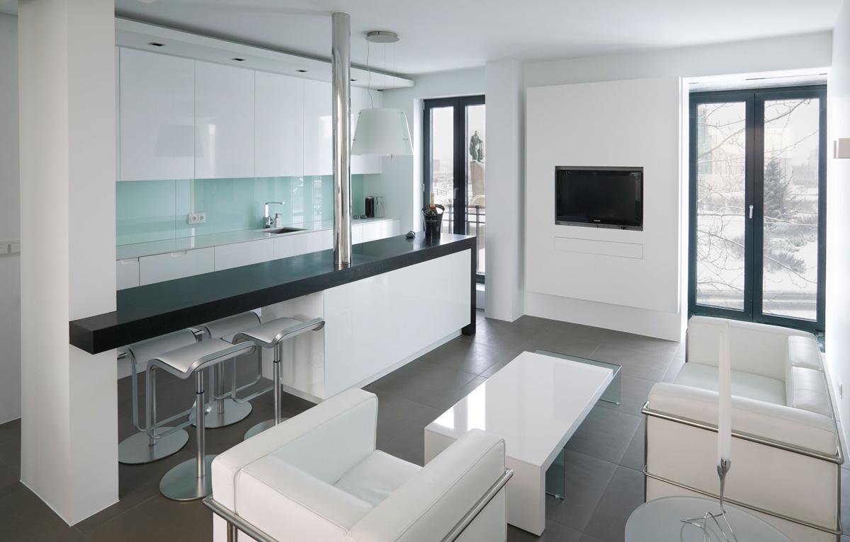 Open-plan kitchen in studio flat photo - 5