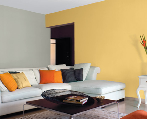 Asian Paints Colour Shades In Yellow Hawk Haven