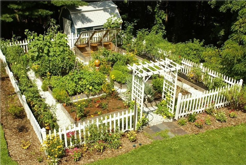 attractive vegetable garden fence photo - 7