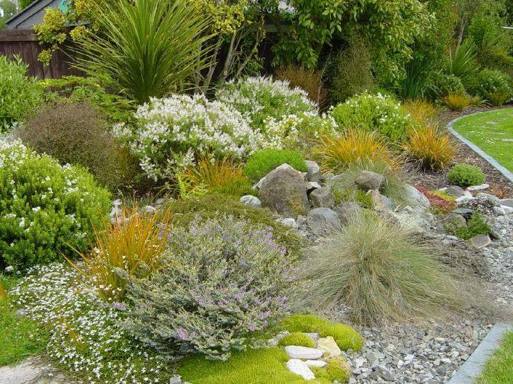 australian native plants for rock gardens photo - 4