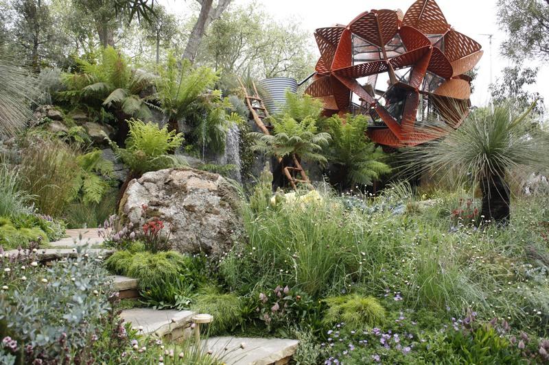 australian native plants for rock gardens photo - 7