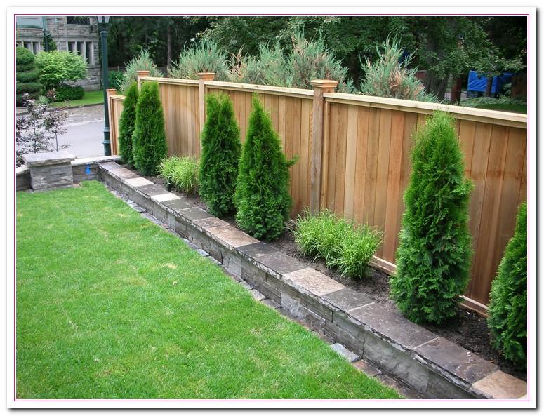 back garden fencing ideas photo - 1