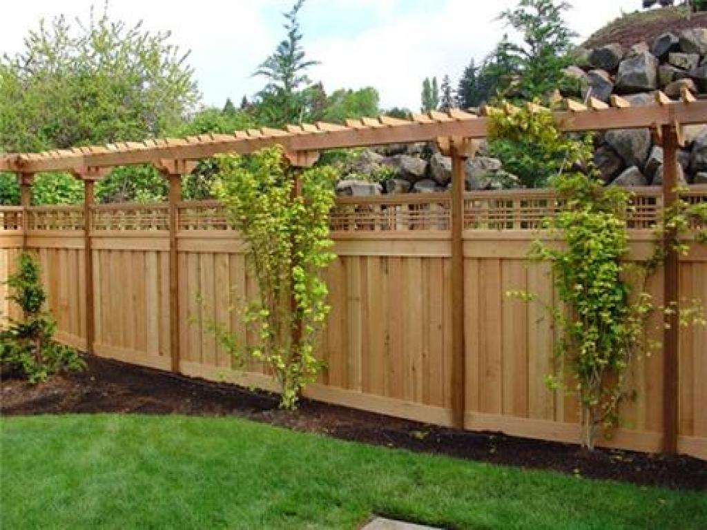 back garden fencing ideas photo - 5