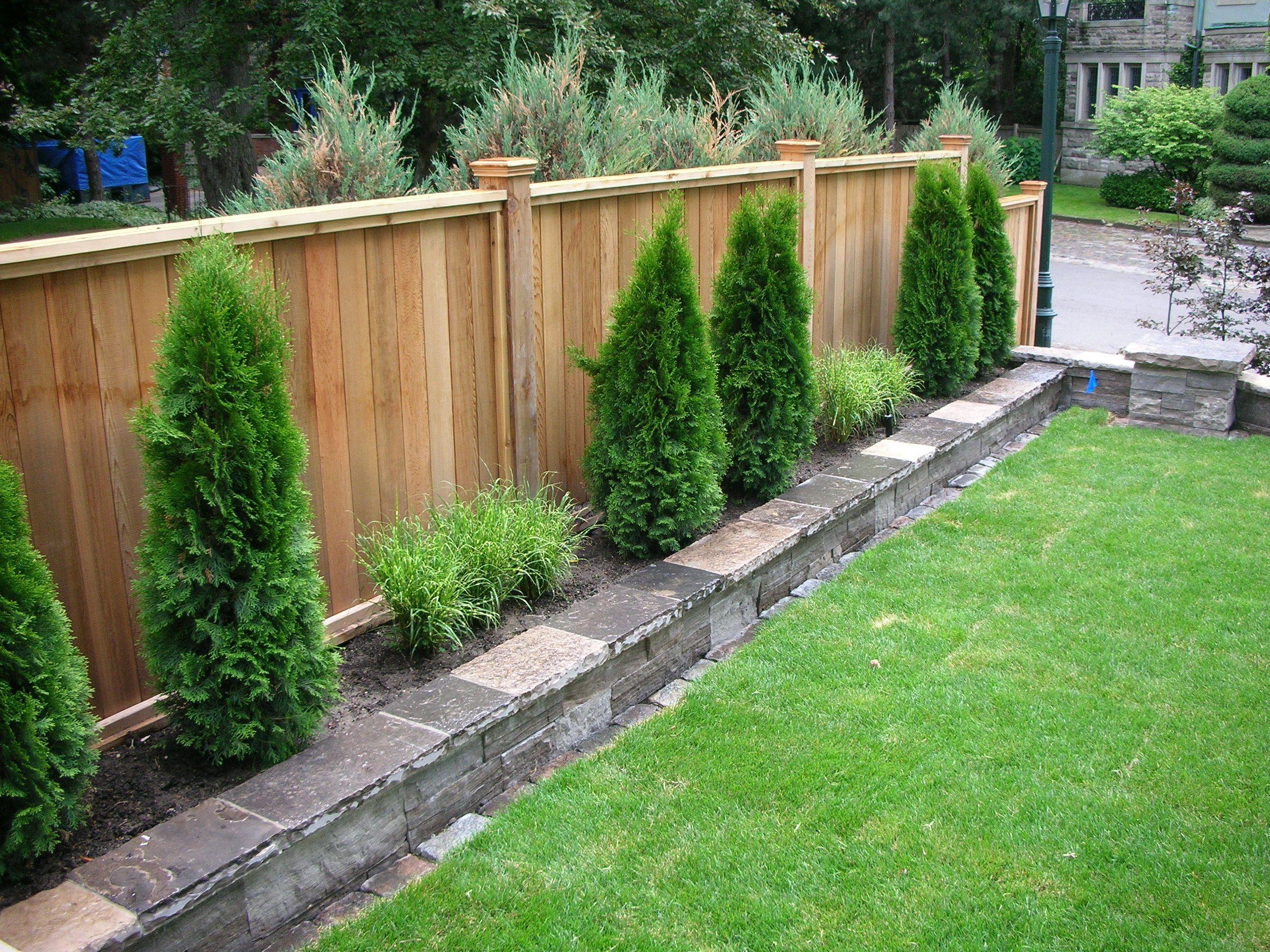 back garden fencing ideas photo - 6