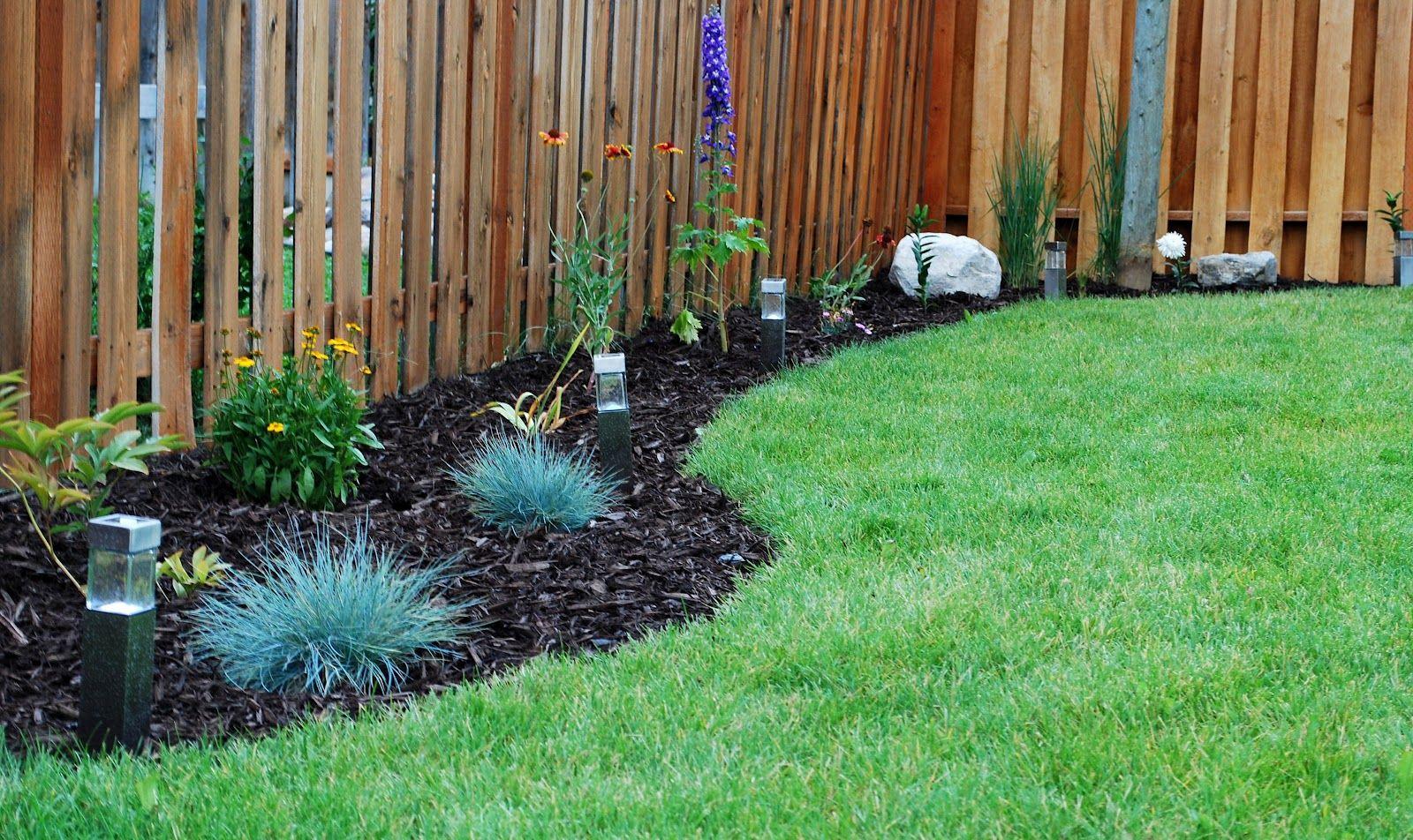 back garden fencing ideas photo - 8