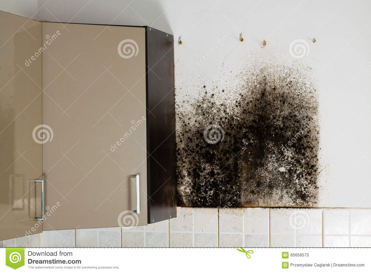 Black mold kitchen cabinets   Hawk Haven
