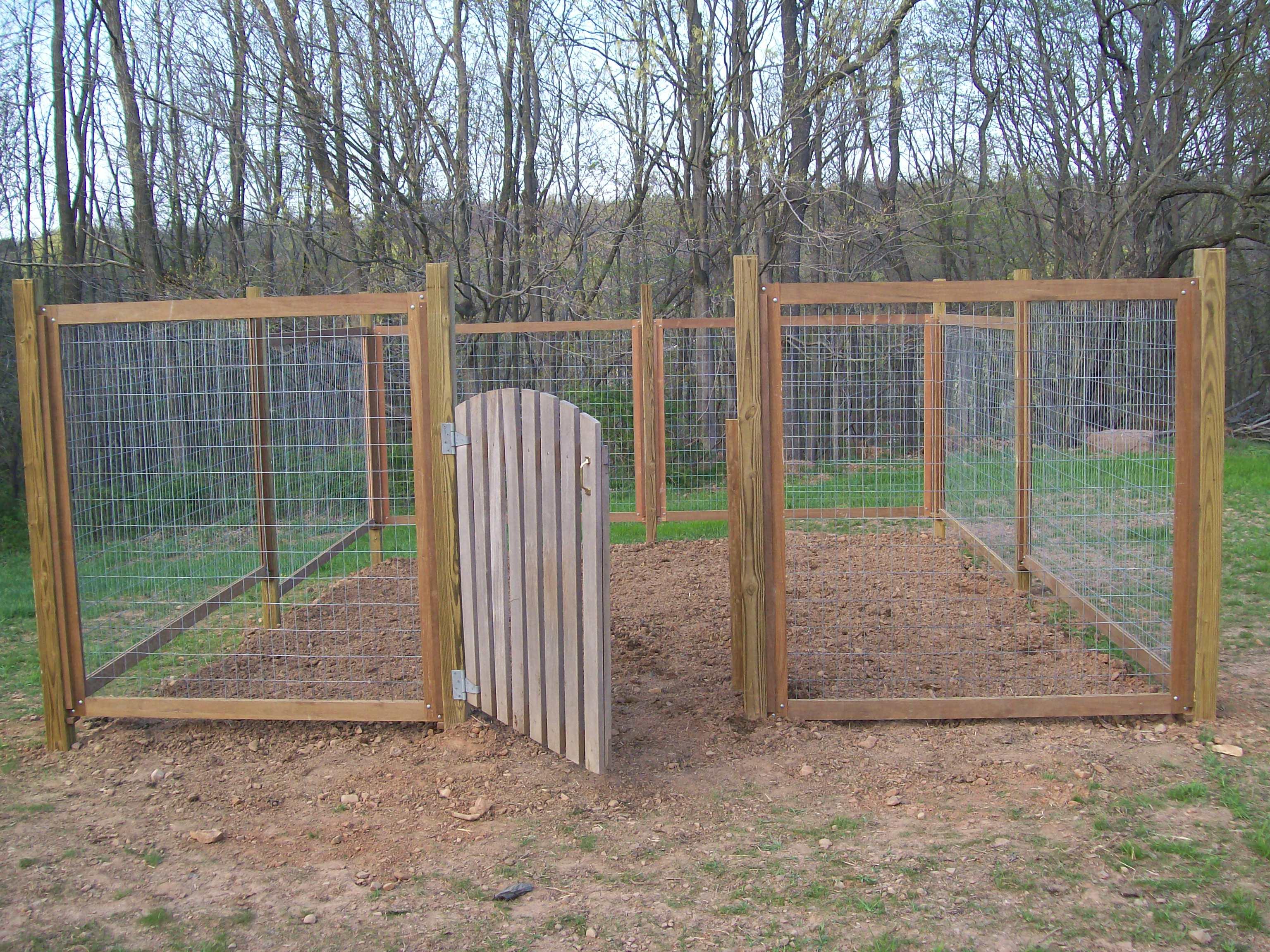 building a vegetable garden fence photo - 10