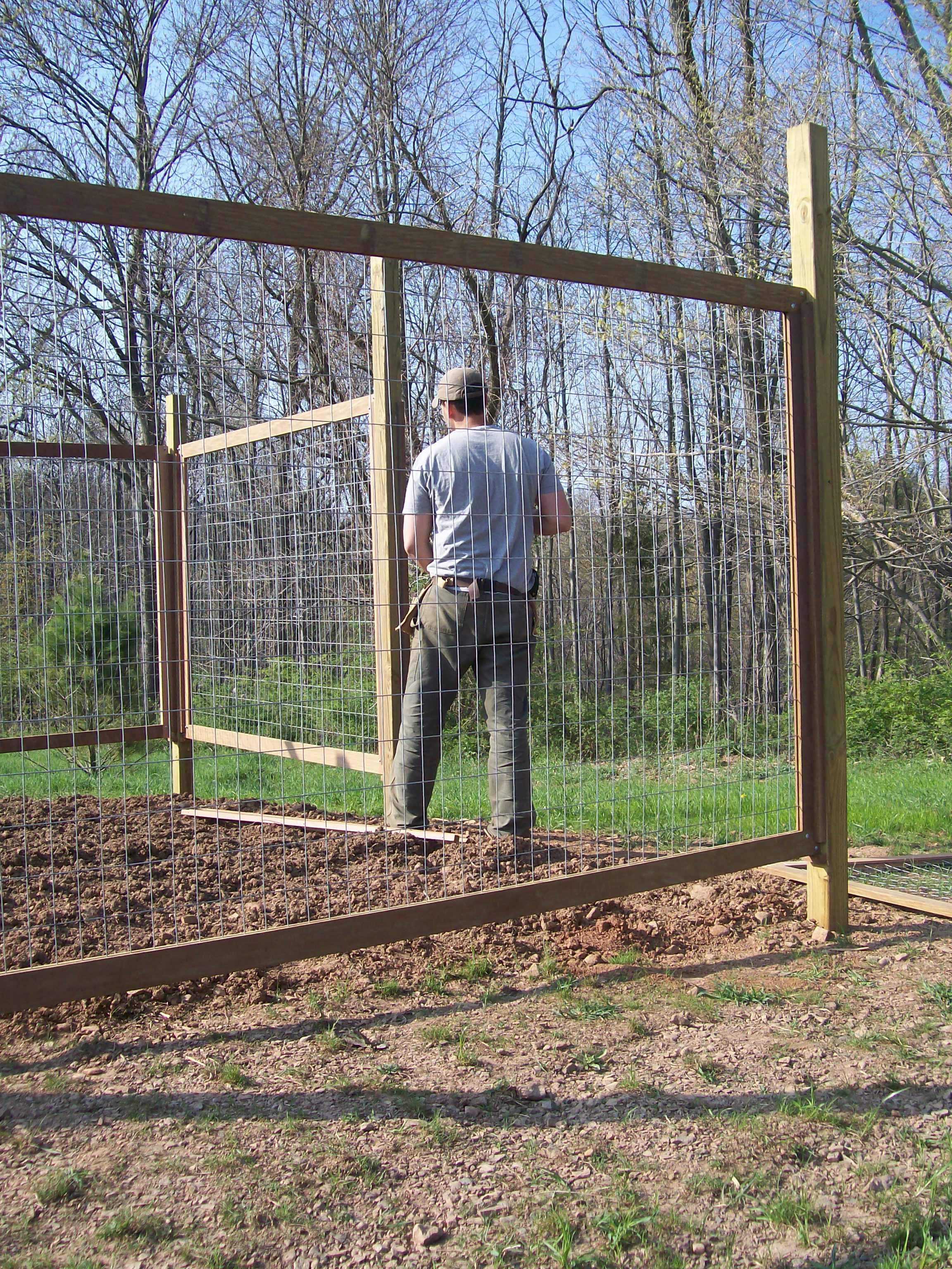 Bon Building A Vegetable Garden Fence Photo   2