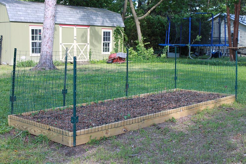 building a vegetable garden fence photo - 5