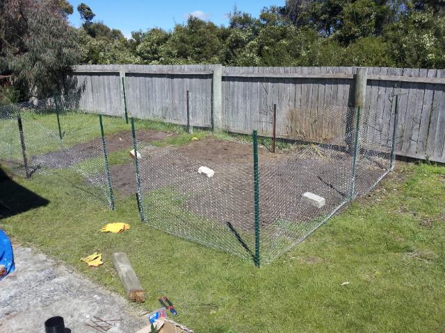 building a vegetable garden fence photo - 7
