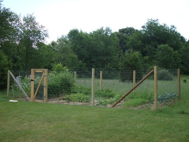 building a vegetable garden fence photo - 8