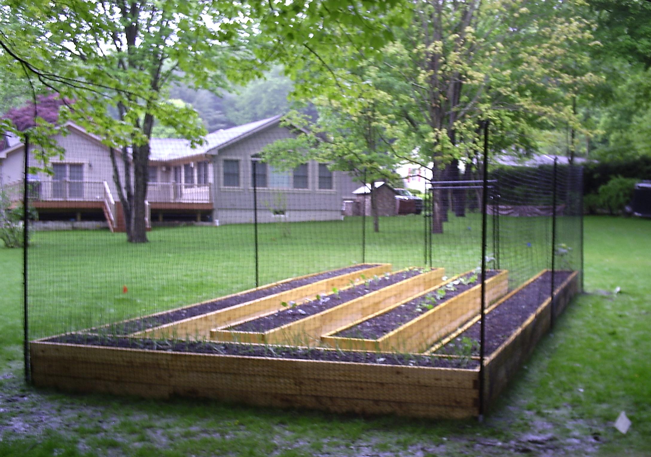cheap vegetable garden fence photo - 10