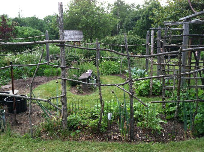 cheap vegetable garden fence photo - 4