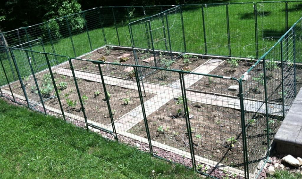 cheap vegetable garden fence photo - 7