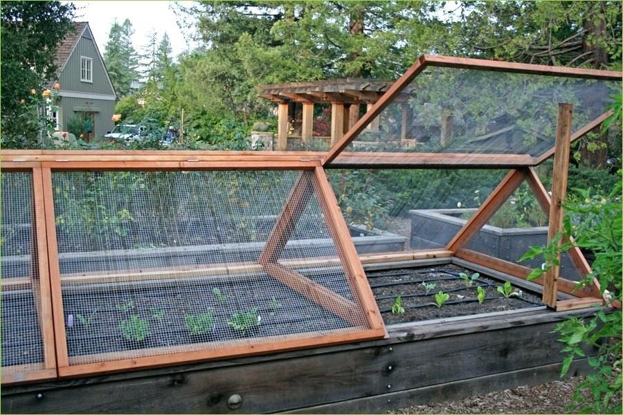 cheap vegetable garden fence photo - 9