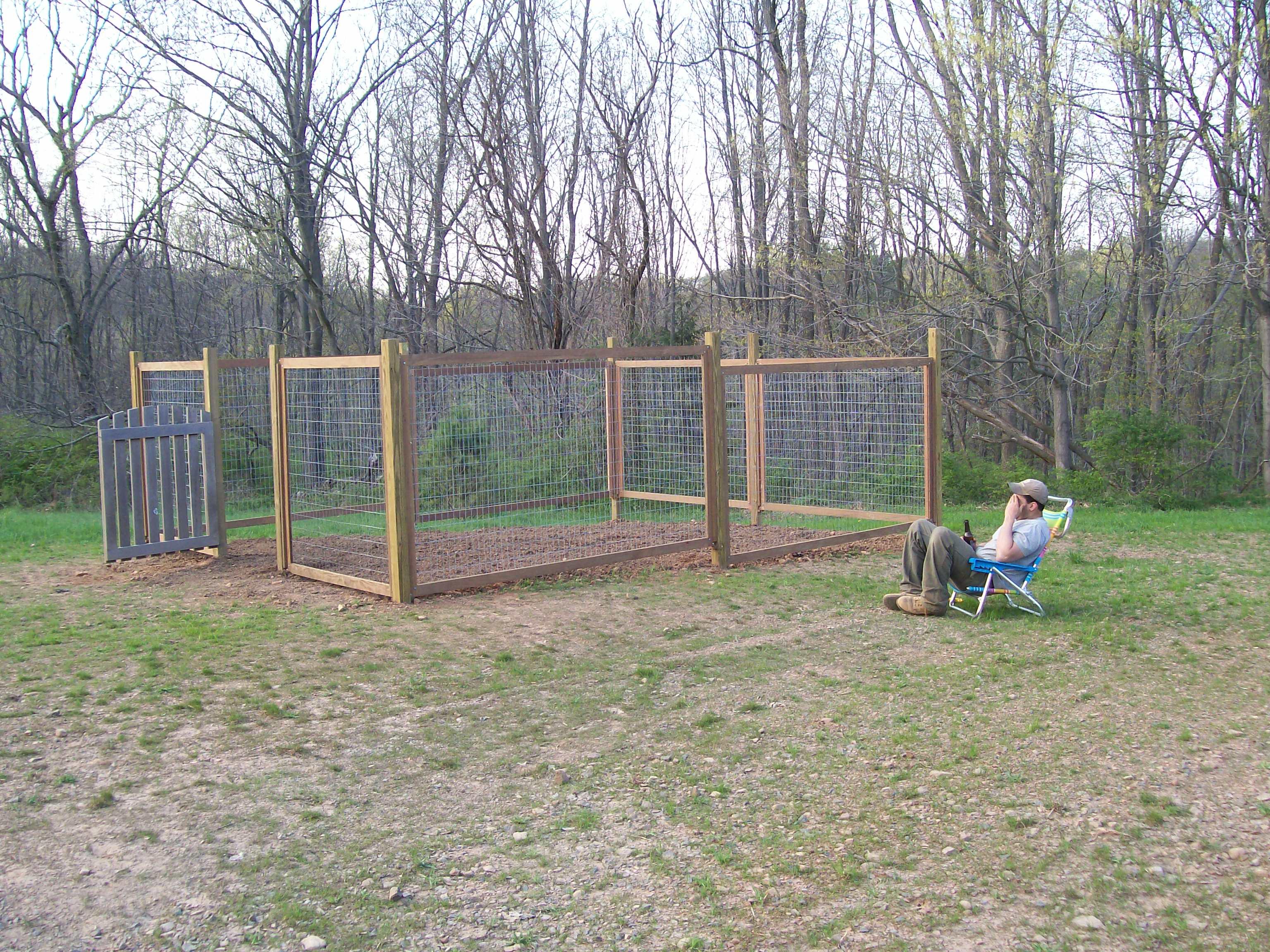 cheap vegetable garden fence ideas photo - 7
