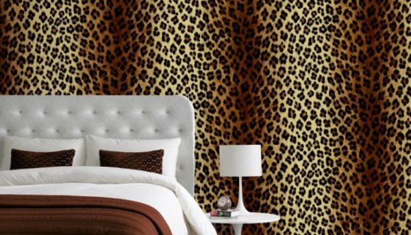 cheetah print bedroom wallpaper photo - 2