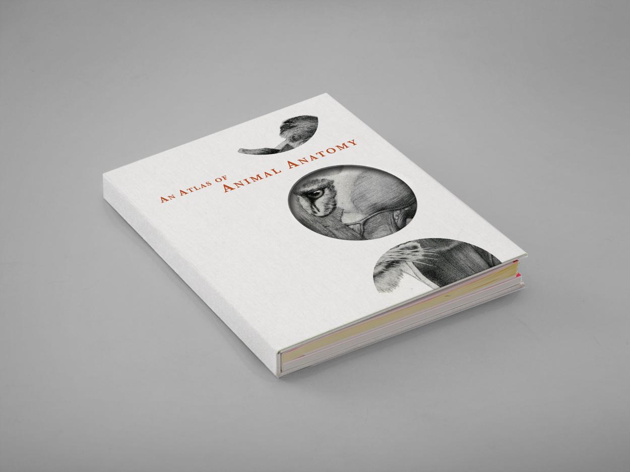coffee table book cover design photo - 6
