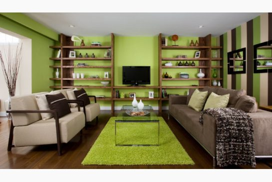 colin and justin living room designs photo - 9