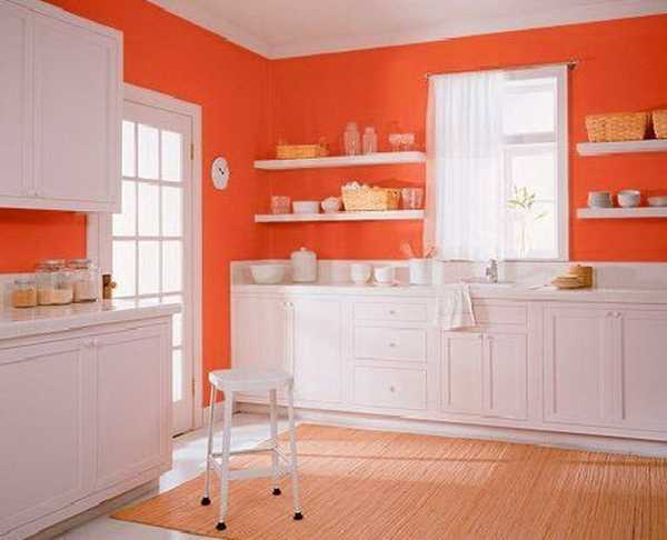 colour shade for kitchen photo - 1