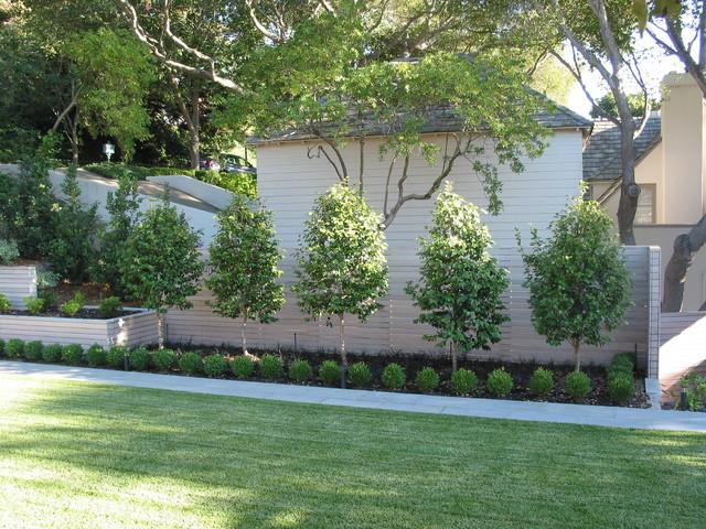 contemporary garden border ideas photo - 9
