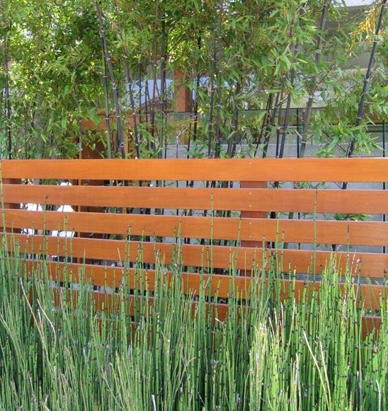 contemporary garden fencing ideas photo - 3