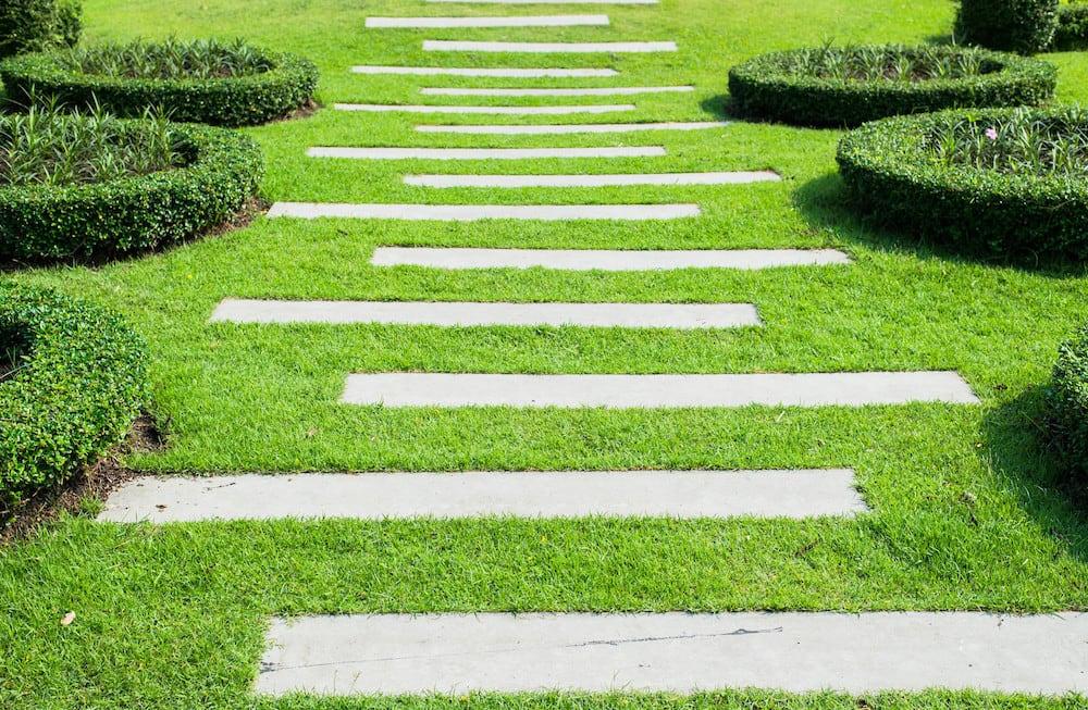 contemporary garden path ideas photo - 3