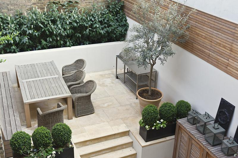 contemporary garden plant ideas photo - 1