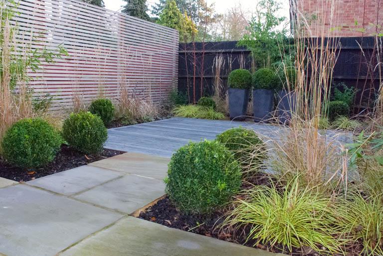 Contemporary garden plant ideas | Hawk Haven