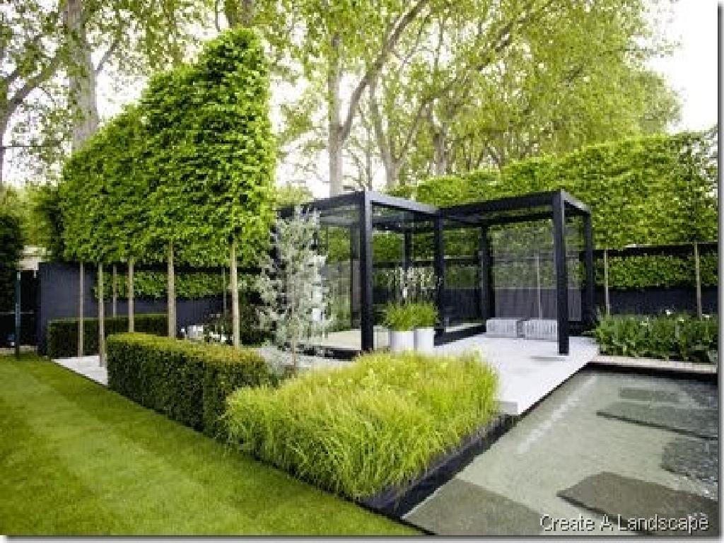 contemporary garden plant ideas photo - 3