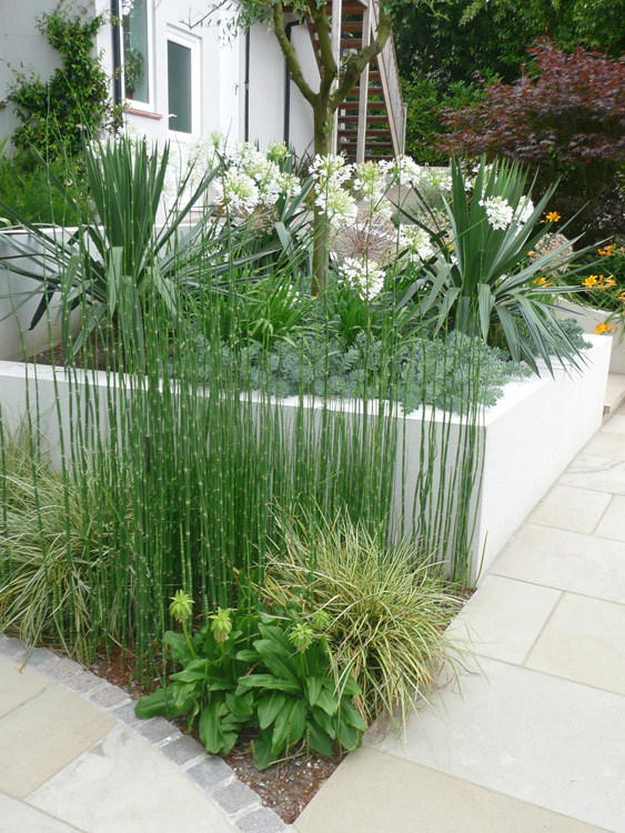 contemporary garden planting plans photo - 9