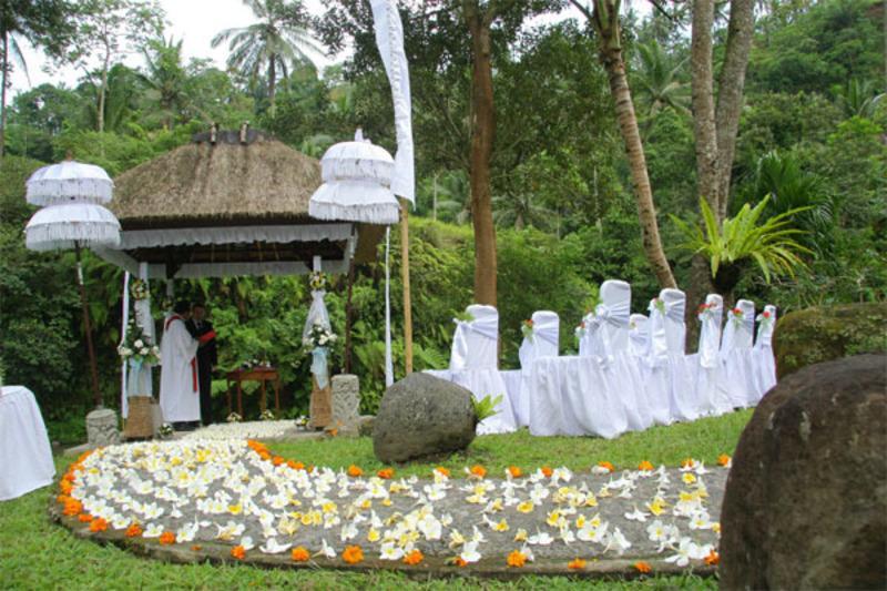 contemporary garden wedding ideas photo - 2