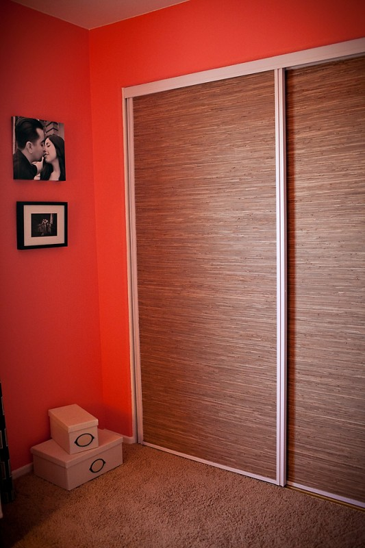 covering mirrored glass closet doors photo - 6