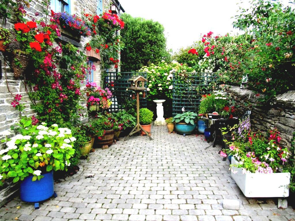 designing an urban vegetable garden photo - 4
