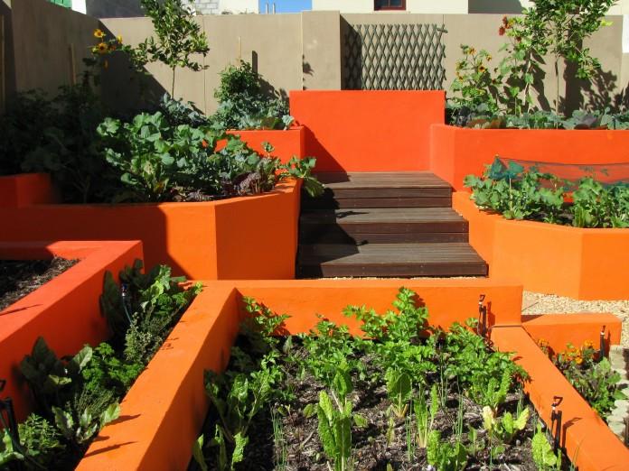 designing an urban vegetable garden photo - 6