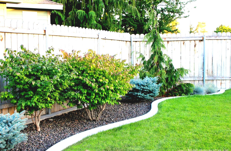 Easy garden design ideas | Hawk Haven on Simple Yard Designs id=68921