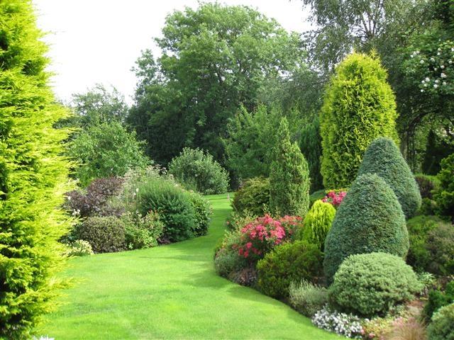 Evergreen Garden Design Ideas Hawk Haven