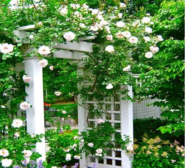 flower garden entrance ideas photo - 10