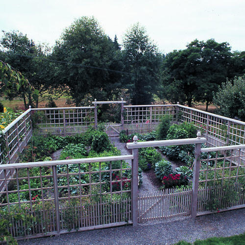 garden deer fencing ideas photo - 2