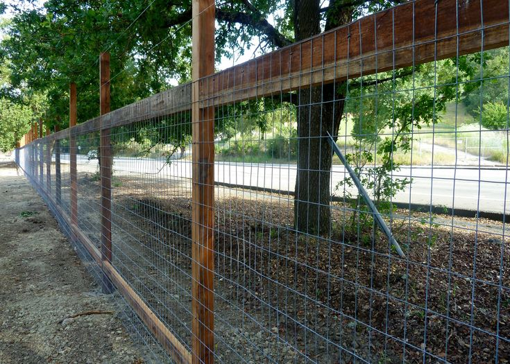 garden deer fencing ideas photo - 6